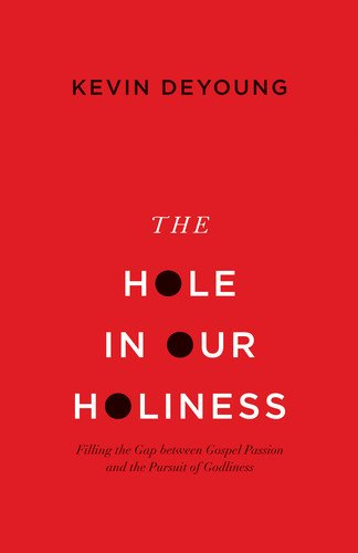 hole in our holiness book cover