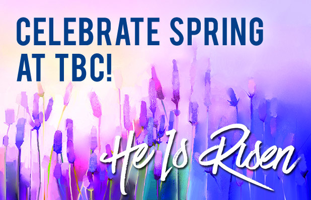 TBC Featured Blog Spring