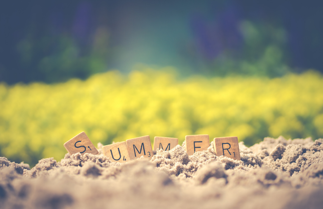 Website Summer Activity 2