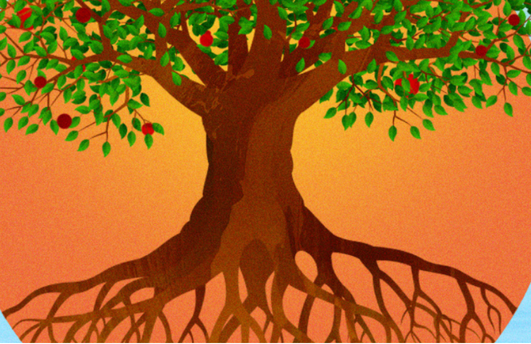 Vision tree blog format website