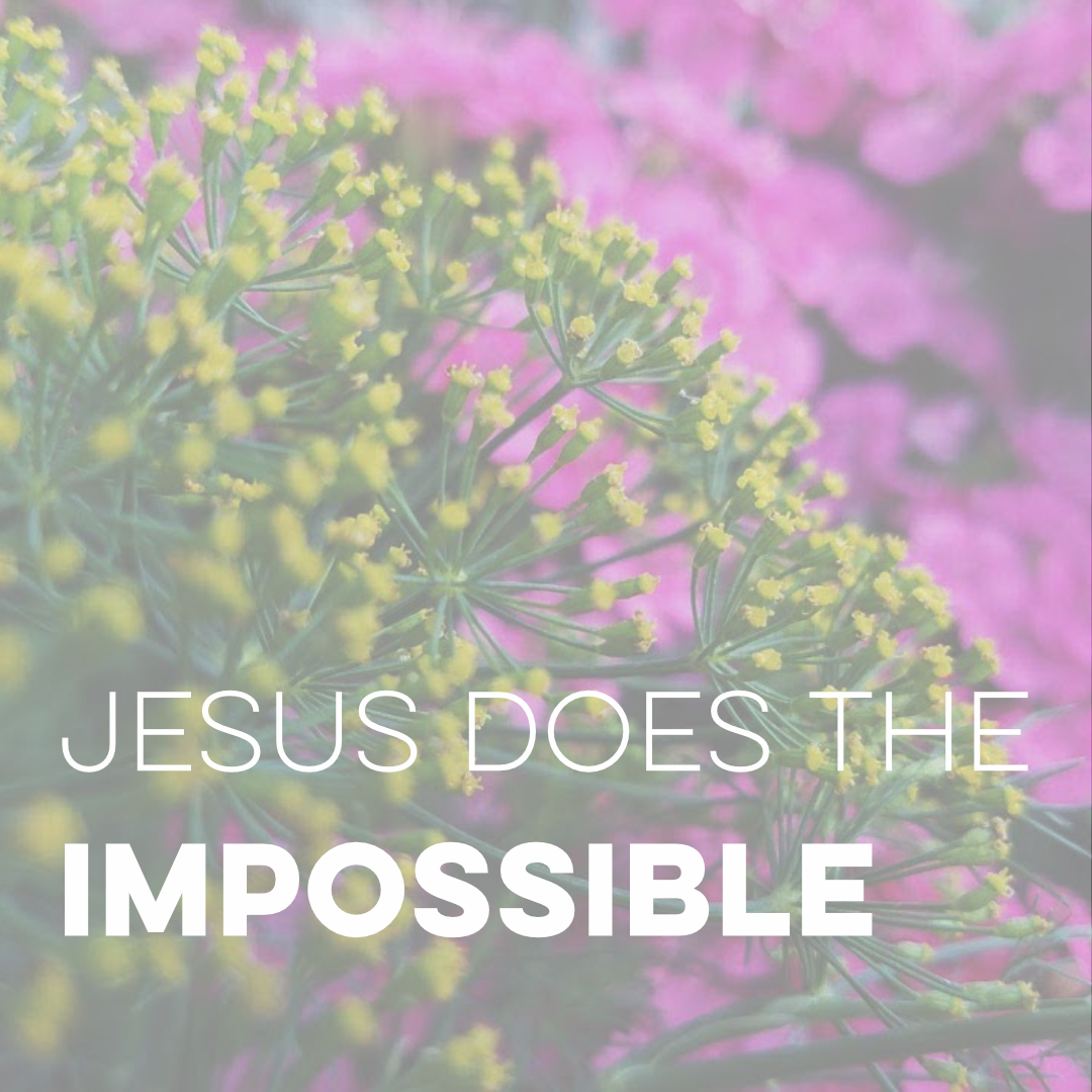 Jesus Does the Impossible