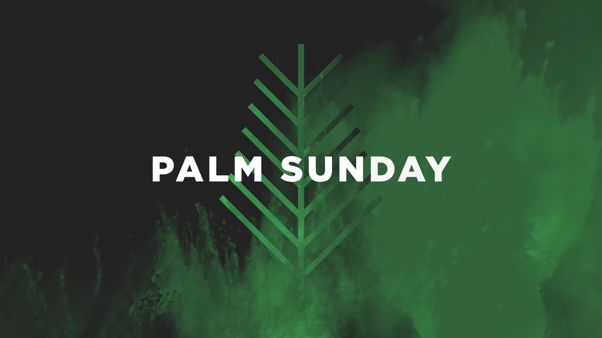 Palm Sunday Is Here_CNM-HD.00_01_16_07.Still001.JPG