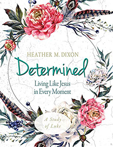 Determined Heather Dixon_small image