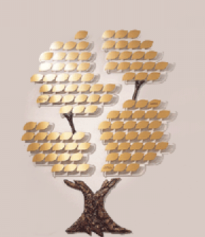 growing tree small_remove plaques_crop