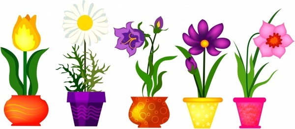 spring_flowers_in_pots_313097