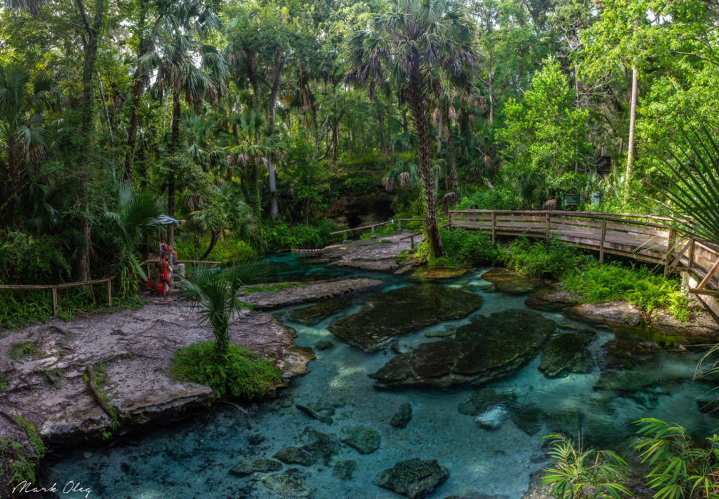 Wekiwa Springs Featured Event Image