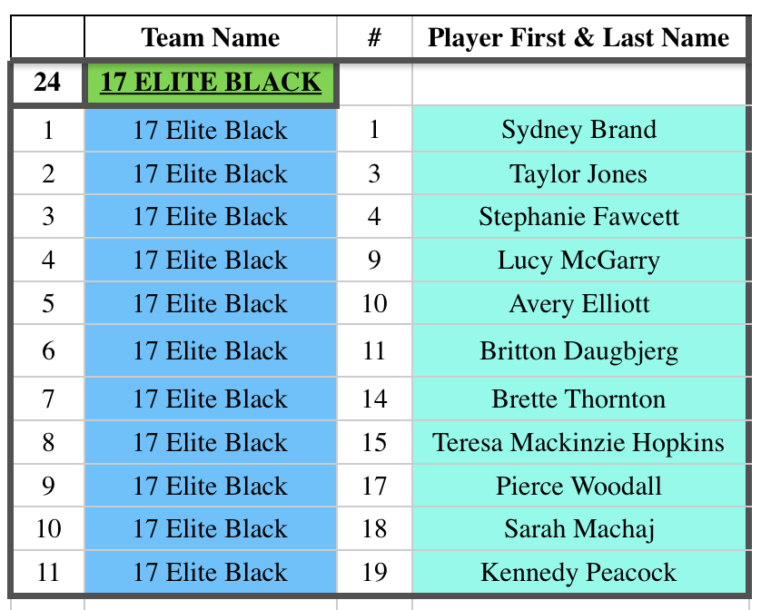 17 Elite Black Roster