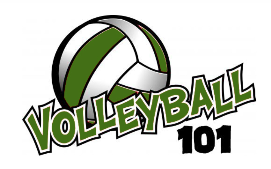 volleyball 101 image