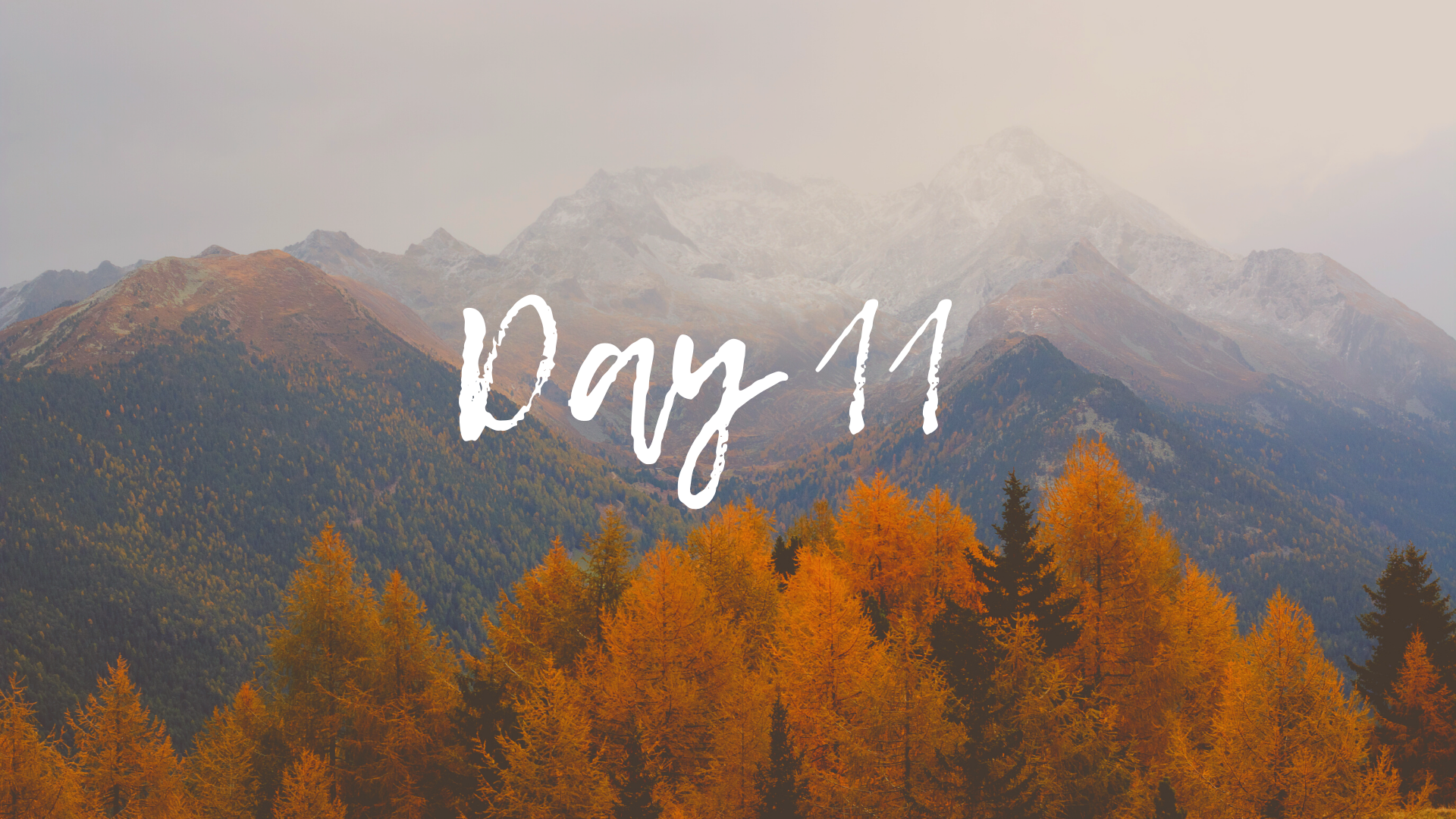 30DayBlog-Day11