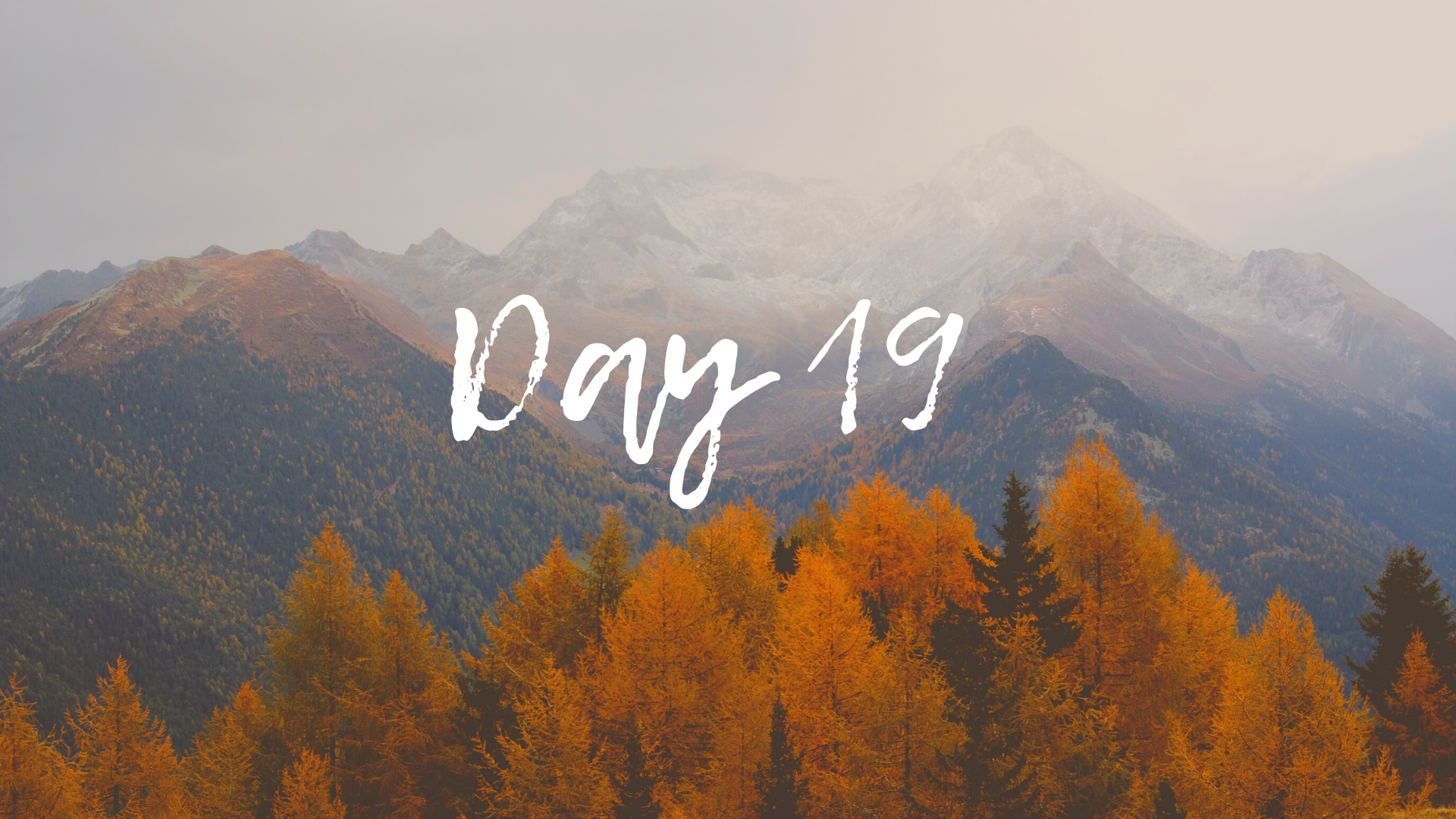30DayBlog-Day19
