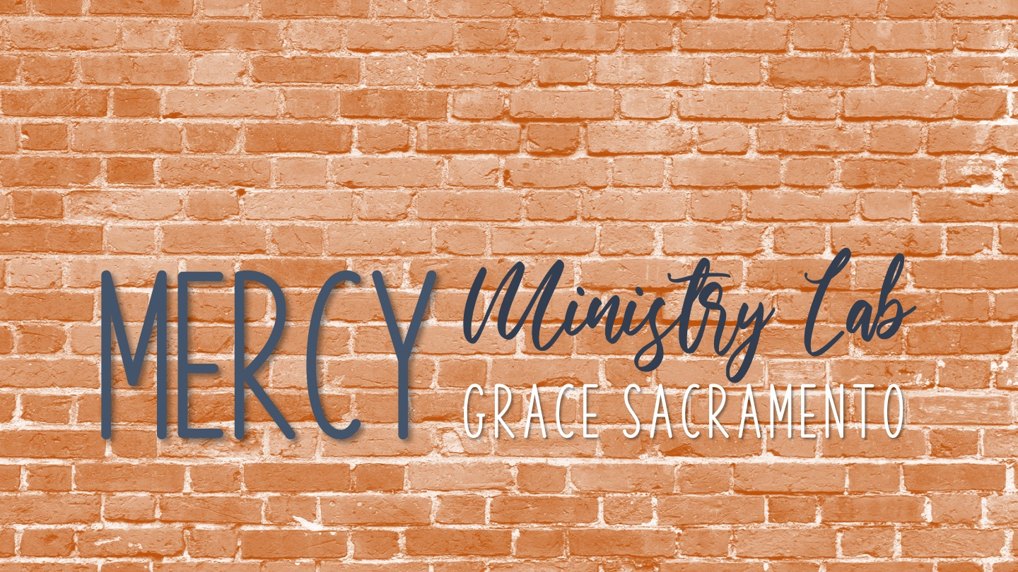 Mercy Ministry Lab Event image
