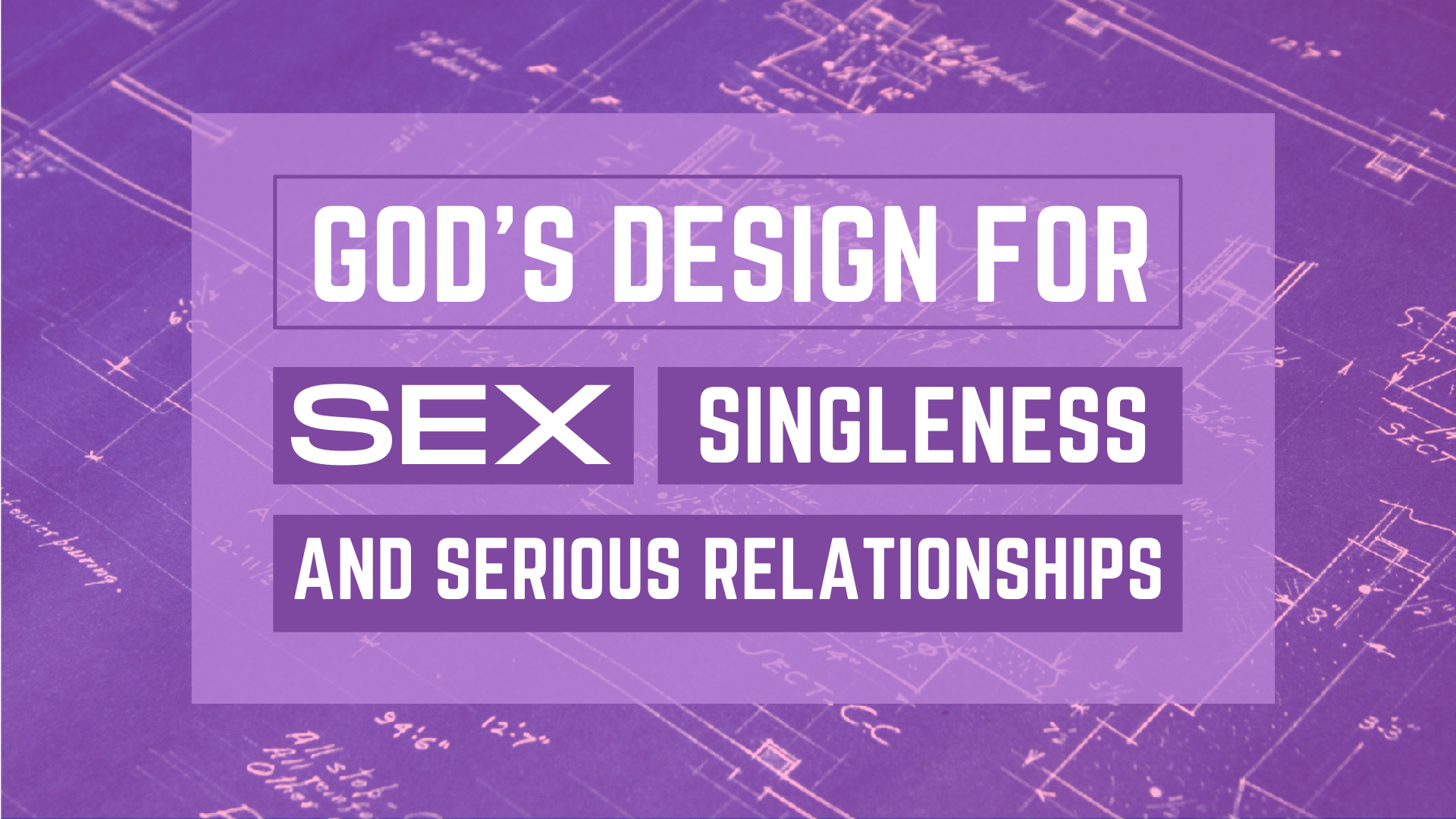 God's Design for Sex, Singleness and Serious Relationships