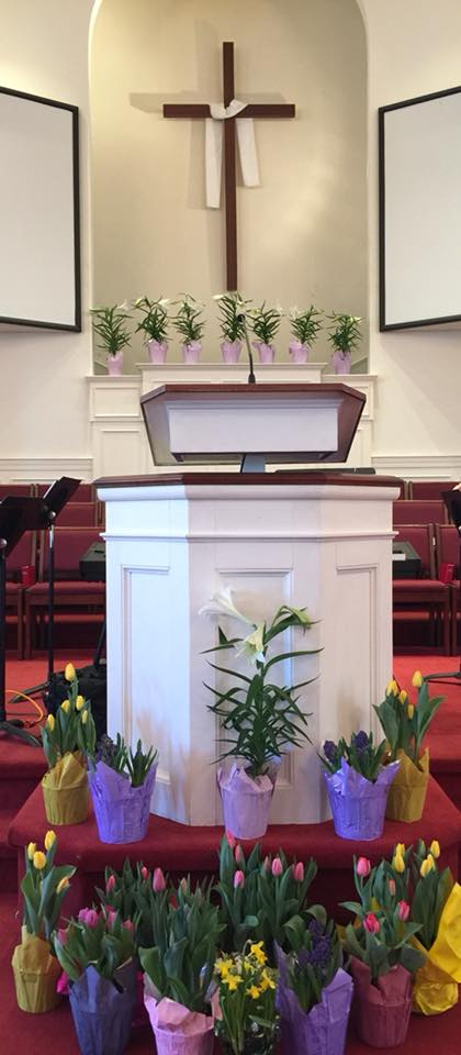 easter flowers at WG