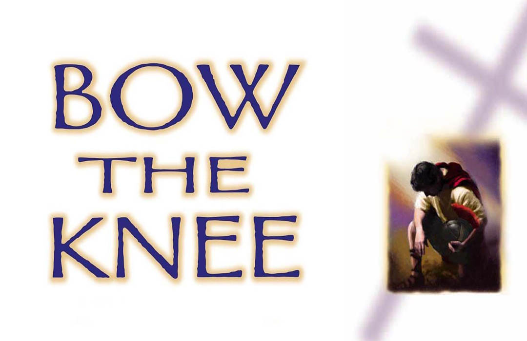 Bow The Knee image