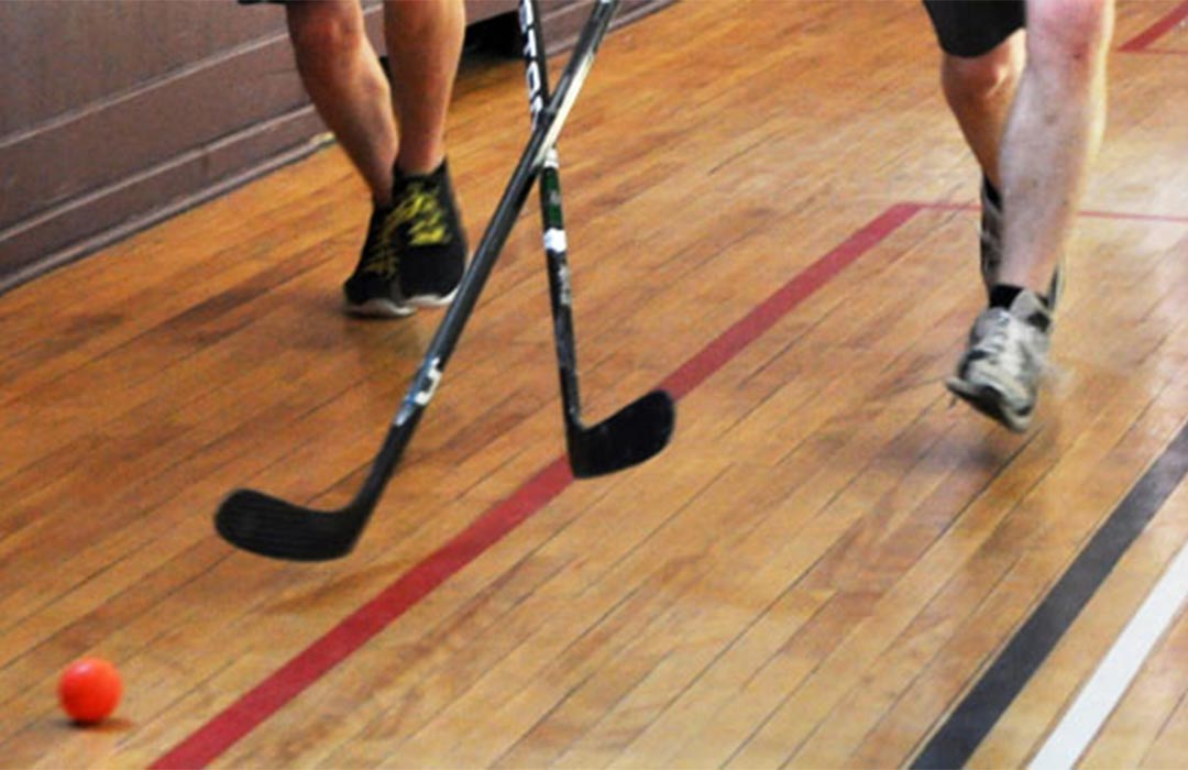 Floor Hockey image