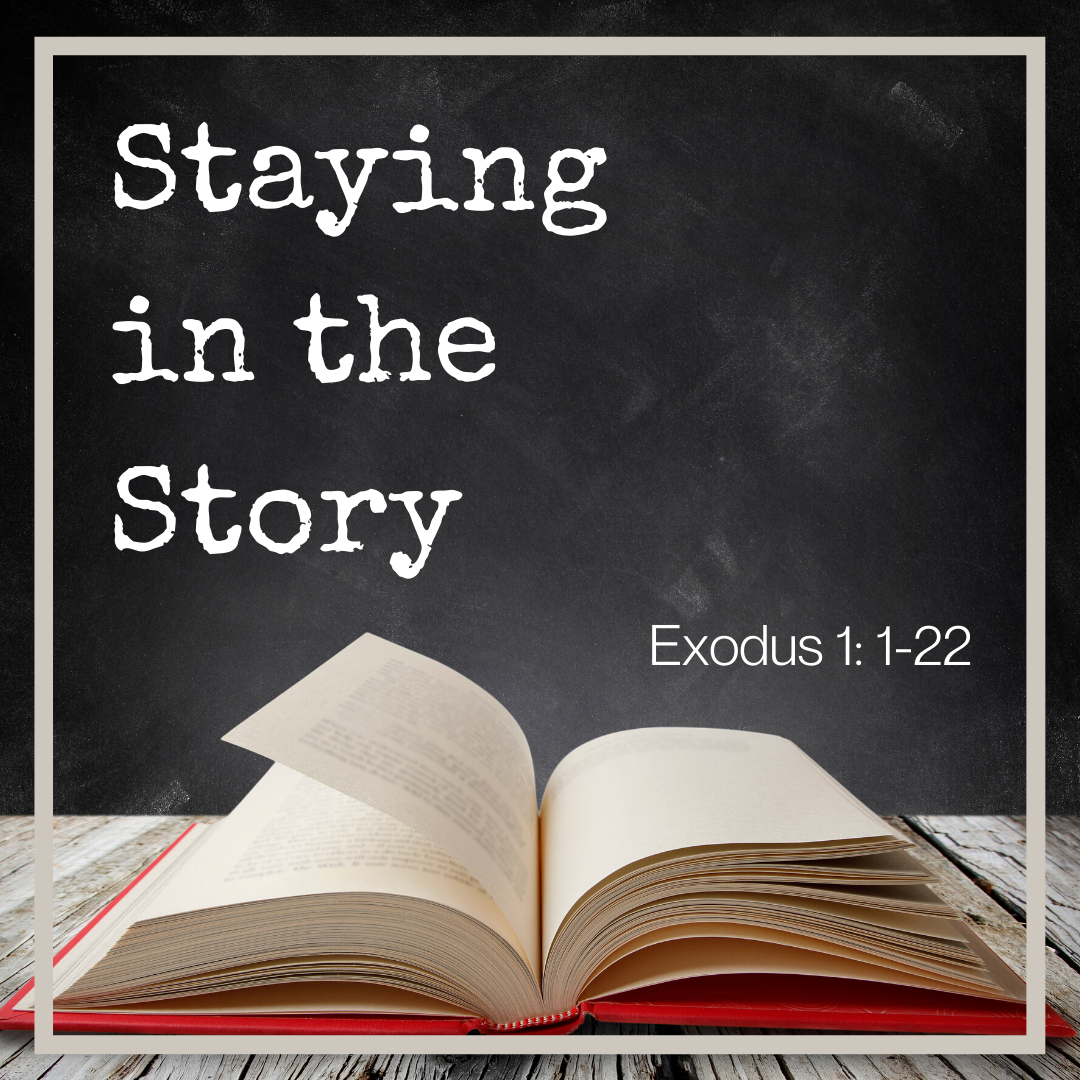Stay in the Story